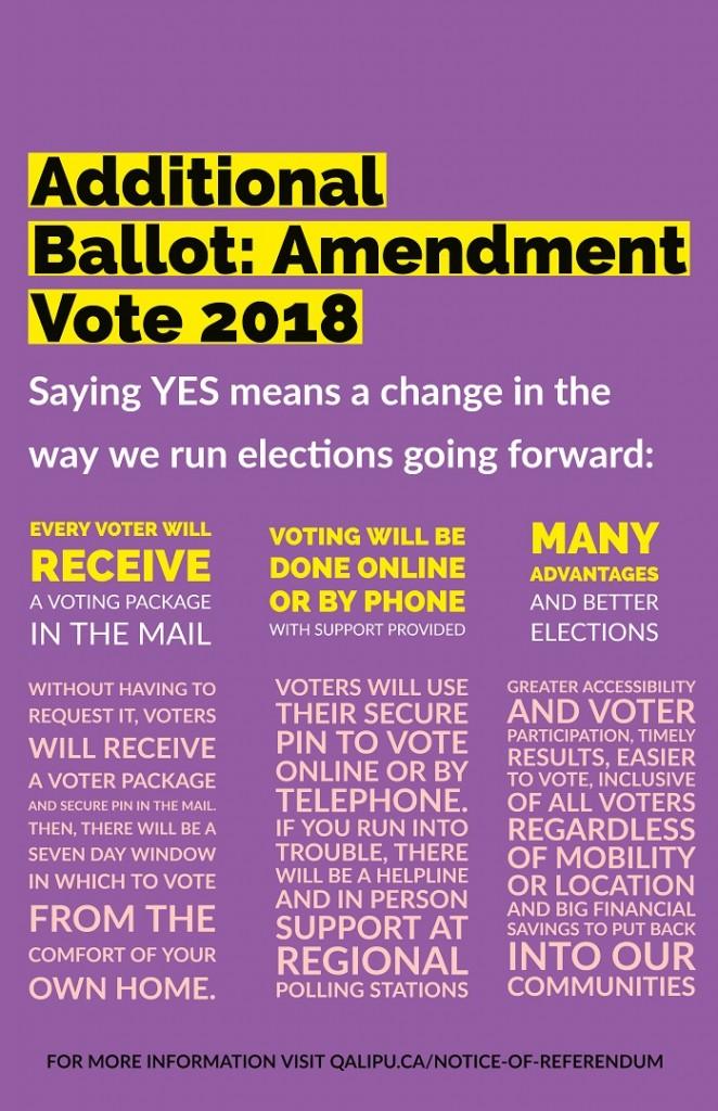 Amendment Vote Poster