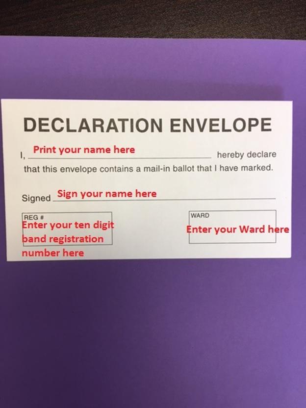 Ballot Declaration