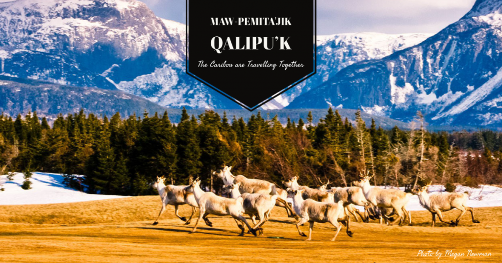 Maw-pemita'jik Qalipu'k (1)