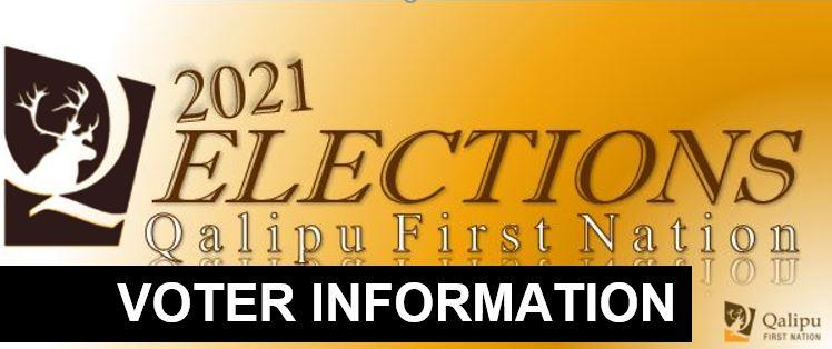 election voter info banner